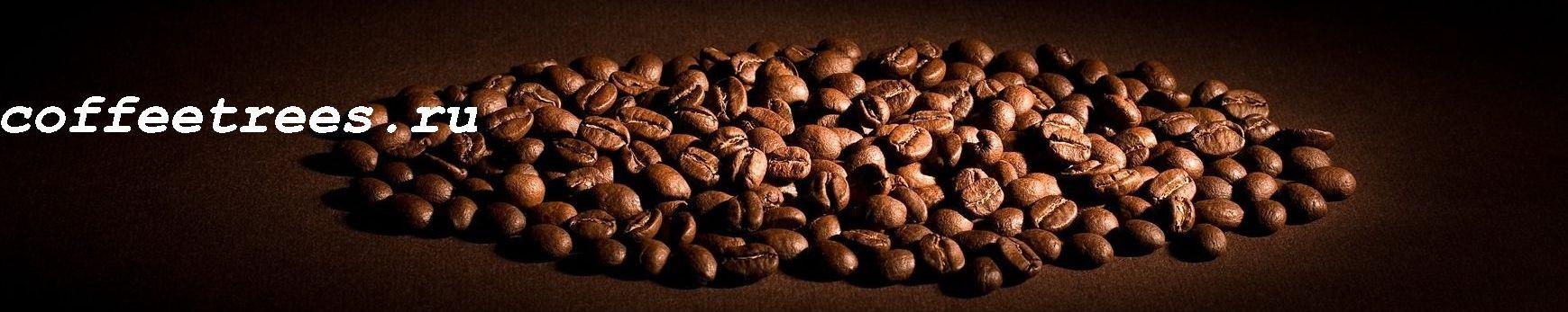 coffeetrees.ru