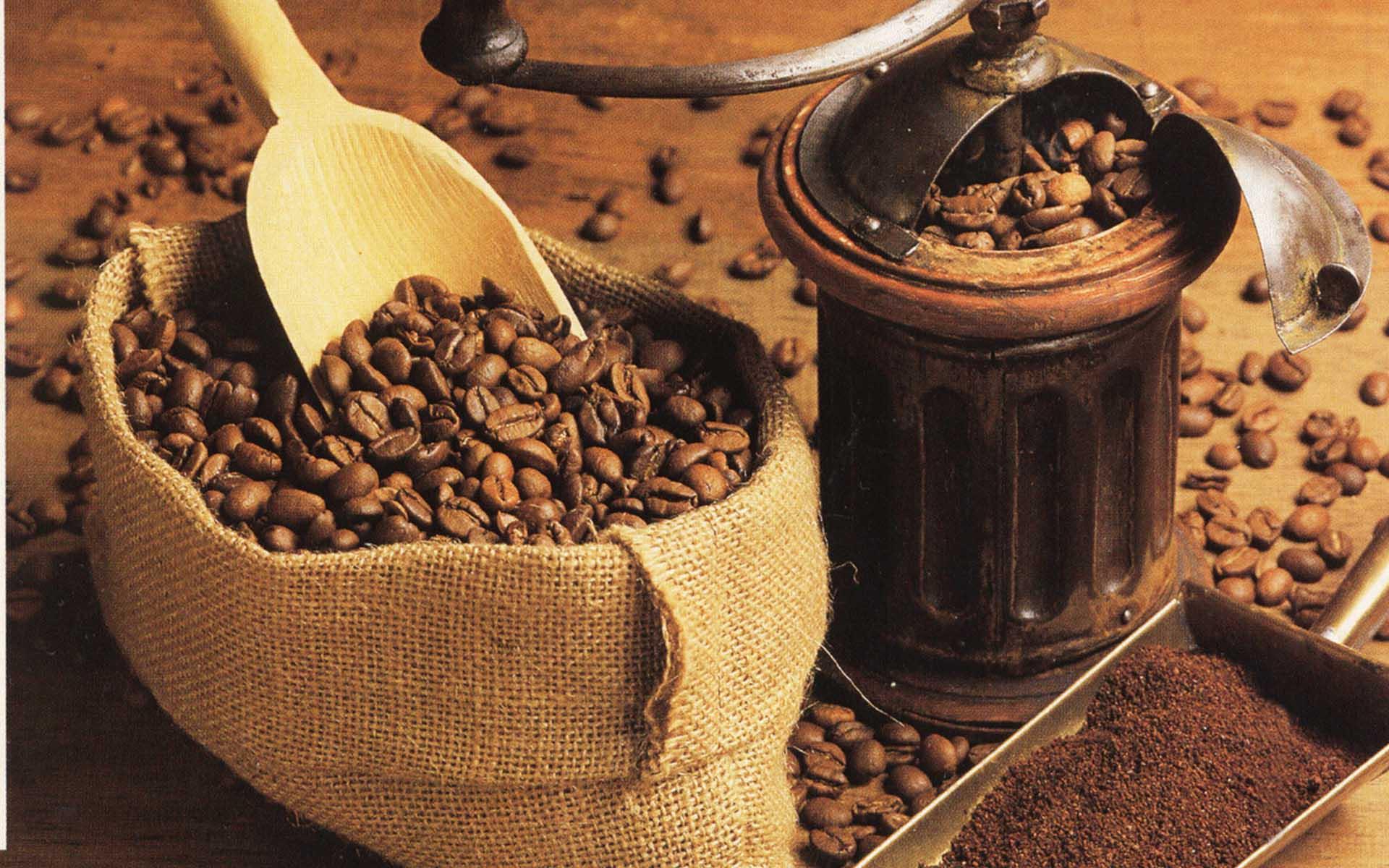 Гайана, кофе в Америке, Суринам, де Клие, распространение кофе, кофе в Новом свете, история кофе, происхождение кофе, кофе, кофейня, кофейный дом, Coffee, coffeetrees, история кофе, рождение традиций, кофейные зерна, ароматный напиток, бодрящий, тонизирующий, Ближний Восток, Турция, Европа, Голландия, Англия, Франция