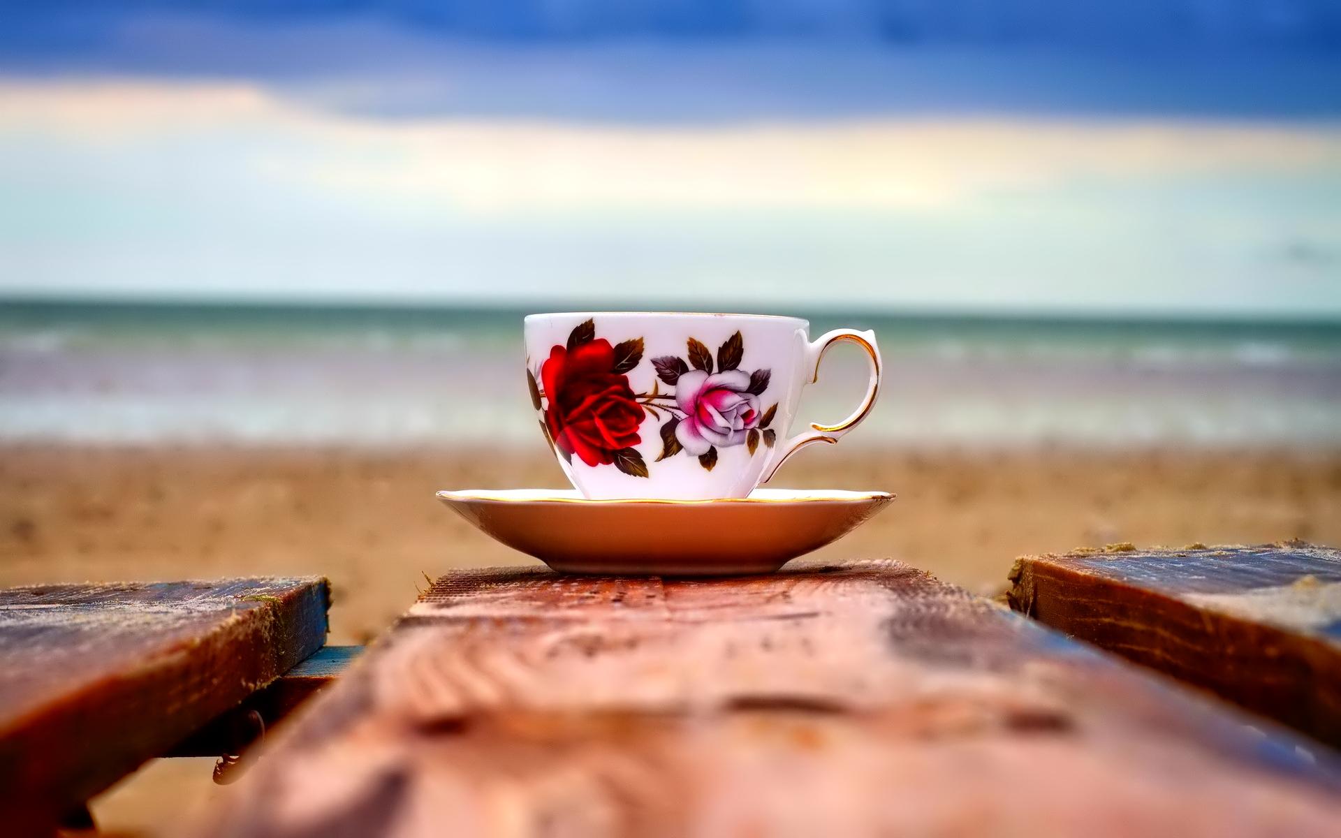 Гайана, Коста-Рика,  Бразилия, кофе в Америке, Суринам, де Клие, распространение кофе, кофе в Новом свете, история кофе, происхождение кофе, кофе, кофейня, кофейный дом, Coffee, coffeetrees, история кофе, рождение традиций, кофейные зерна, ароматный напиток, бодрящий, тонизирующий, Ближний Восток, Турция, Европа, Голландия, Англия, Франция